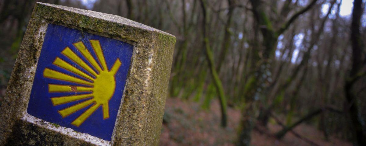 Los trabajos, iniciados en septiembre, incluyen la limpieza, desbrozado y optimización de la señalización para peregrinos en los 210 kilómetros del tramo que transcurre por la comunidad gallega.